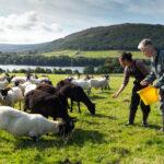 Loch Arthur Community